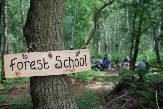 forest_school_2_roydon_wood_fair_2013_by_nat_light_17.jpg